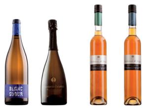 De Malvasia wijnsoorten