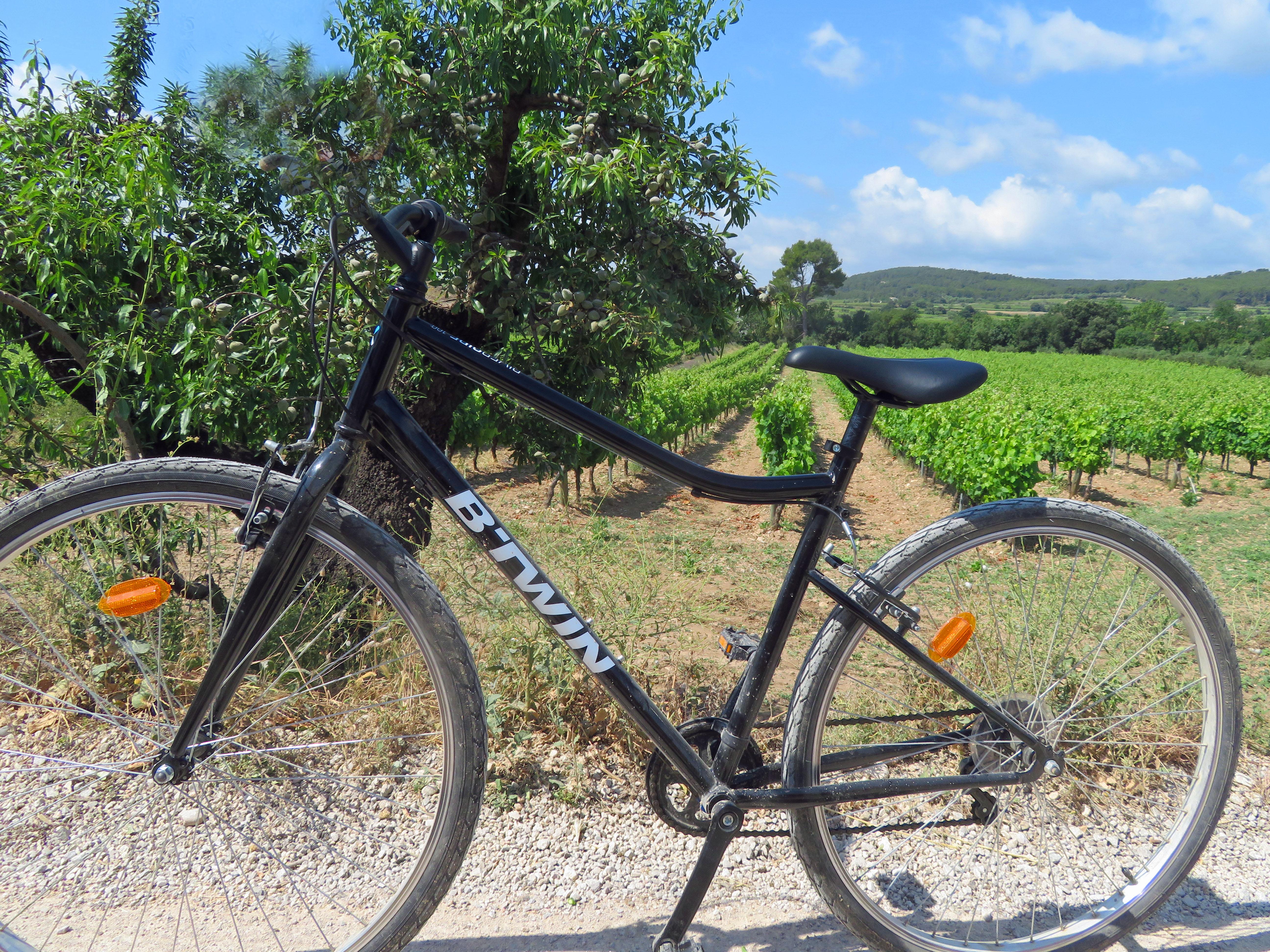 Mountainbike voor wijngaard.